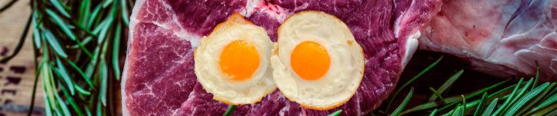 - eiweiss01 800x167 - Eiweiße – wie ein Ei dem anderen?