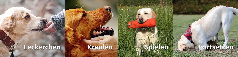 - hundeerziehung belohnungen01a - Hundeerziehung und Hundetraining